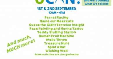 Fundraising event: Wynford Farm, 1 & 2 September