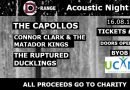 Update-Fundraising event: D Range Acoustic Night